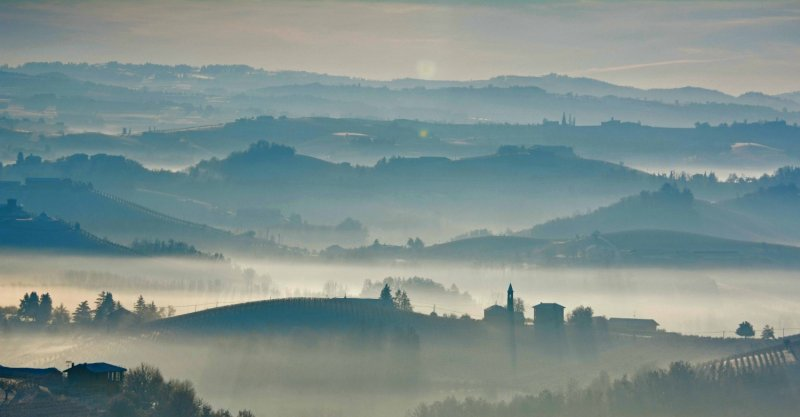 langhe in the mist